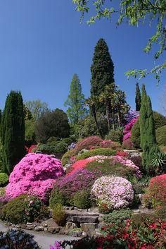 Leonardslee Gardens in Springtime, Sussex, England