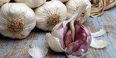 L'aglio è una pianta erbacea facente parte della famiglia delle Liliacee. Il suo bulbo è una fonte immensa di nutrienti, sali minerali, vitamine ed elementi anti-ossidanti che possono giovare enormemente al nostro organisimo. Inoltre l'aglio è storicamente conosciuto per le sue straordinarie proprietà antibiotiche e antifungine, tant'è che in passato è stato più volte utilizzato per combattere malattie ed epidemie anche gravi, come il tifo ed il colera.