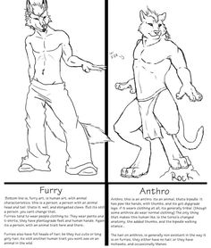 Here's the differences now can my friends stop calling me a furry? Drawing Techniques, Drawing Tips, Drawing Poses, Figure Drawing Tutorial, Human Body Drawing, Furry Drawing, Anthro Furry, True Art, Character Design References