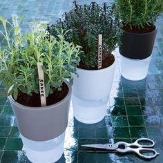 pot à réservoir d'eau pour vos plantes aromatiques     Le matériel se compose : d'un pot en céramique émaillée et ajouré au fond, destiné à recevoir la plante, d'une réserve d'eau en verre sablée et d'une mèche blanche en nylon pour le drainage. La mèche trempe dans l'eau et humidifie la terre par capillarité. La plante peut ainsi vivre en autarcie plus d'une semaine pendant qu'à tout moment, vous pouvez contrôler le niveau d'eau à travers la paroi transparente.