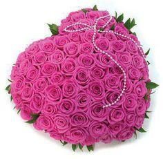 Beautiful pinks