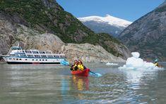 Alaskan Dream Cruises - African Wildlife Safaris