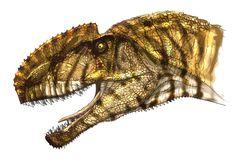 Monolophosaurus by Fafnirx on DeviantArt