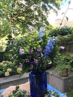BUTTER WAKEFIELD loves nothing more than putting together flowers for any occasion.  Here she arranged a big bunch of flowers for a friends dinner party.  The dark blue pickle jar is the perfect container. She used a combination of delphiniums campanula and Oak leaves to give this arrangement a lush opulent feel
