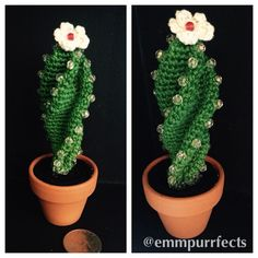 cactus with pearls and flower that I made for my mother-in-law., Amigurumi cactus with pearls and flower that I made for my mother-in-law., Amigurumi cactus with pearls and flower that I made for my mother-in-law. Crochet Cactus, Crochet Art, Crochet Home, Crochet Gifts, Crochet Animals, Crochet Patterns, Deco Cactus, Cactus Flower, Yarn Flowers