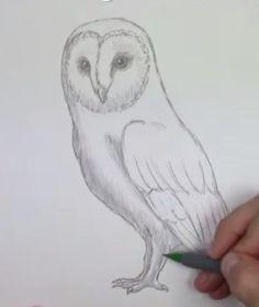Auf diese Seite erkenne Sie, wie kann man eine Eule einfach zeichnen. Es geht gar nicht so schwer, wie Sie denken. Schauen Sie mal und probieren Sie selber.