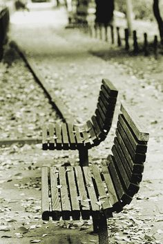 bench by takekazu, via Flickr