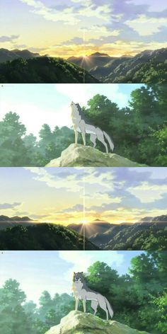 Wolf Children | Ame Grows Up