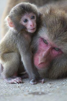 I love mam! | Flickr - Photo Sharing!