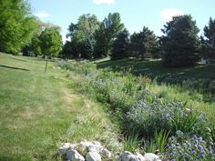Tips to Improving Water Quality in Residential & Urban Spaces