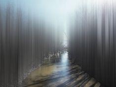 Digitally Altered Trees Resemble Ghostly Spirits - My Modern Metropolis