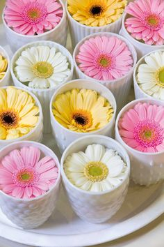 Get inspired by the latest gerbera trends. Watch the beautiful gerbera images and let this colorful flower inspire you. Pink Yellow, Pink Color, Pink And Gold, Pink White, Table Arrangements, Floral Arrangements, Colorful Flowers, Beautiful Flowers, Ornaments