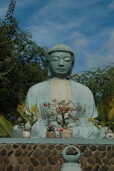 Buddha in Lahaina Maui Pictures, Lanai Island, Lahaina Maui, Trip To Maui, West Maui, We Get Married, Hawaiian Islands, Peace Of Mind, Picture Ideas