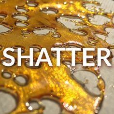 Have you heard about the latest craze in cannabis? Shatter is the casual term for a type of weed concentrate that will literally shatter when dropped/tapped
