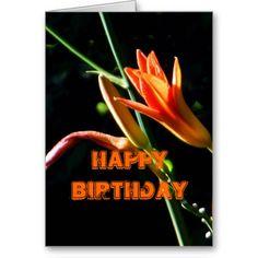 Orange Daylilies Happy Birthday Card