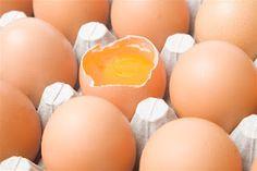 How settlers preserved eggs