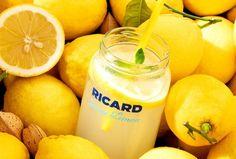 Nutribullet, Fruit, Cantaloupe, Kitchen Appliances, Create, Food, Artwork, Squeezed Lemon, Ricard