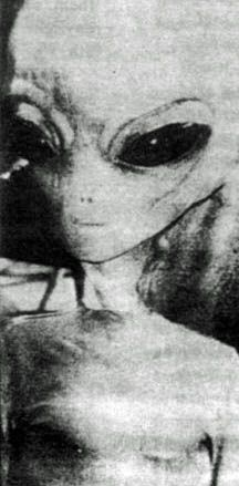"""""""Zetas/Greys generally use telepathy among themselves, and also in communicating with other species, but they cannot talk as Earth humans do, since their vocal cords are rudimentary and have been adapted out for the most part because it is not needed with telepathy. Some still do make chirping or whistling sounds similar to crickets or the clicking sound of dolphins."""" 