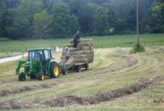 High Hay Time
