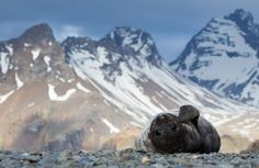 National Geographic Photo Contest 2012 - In Focus - The Atlantic