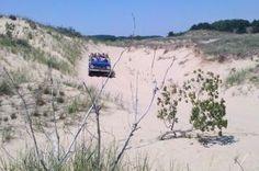 Dune Boggy Adventure