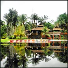 One of my favorite places in Guyana, Arrow Point Nature Resort