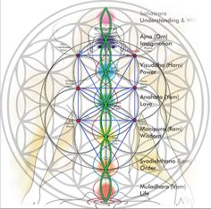 (100+) sacred geometry   Tumblr
