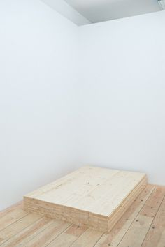 Ethan Cook, 100 Planks (Tongue and Groove), 2013.