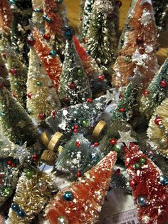 Bottle brush trees; oh my