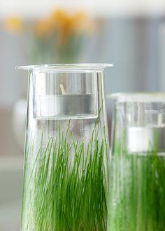 ruoho,purkki,kynttilä,kasvit sisustuksessa,rairuoho,pääsiäisruoho,pääsiäinen,Tee itse - DIY