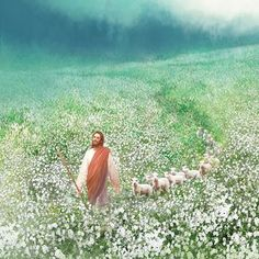 painting leading through flowers christ jesus flock sheep field white of a painting of jesus christ leading a flock of sheep through a field of white flowersYou can find Pictures of christ and more on our website Paintings Of Christ, Jesus Painting, Bad Painting, Jesus E Maria, Première Communion, Pictures Of Jesus Christ, Jesus Tattoo, Christian Artwork, Lds Art