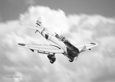 Val ~ Aichi D3A Type 99 Dive Bomber by D. Castleman ~ BFD