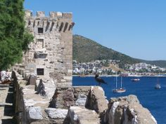 Bodrum Castle and a vain crow...