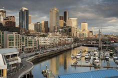 Downtown Seattle and Bell Harbor Marina - JimStiles love ma city