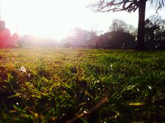 Stephans green - Park