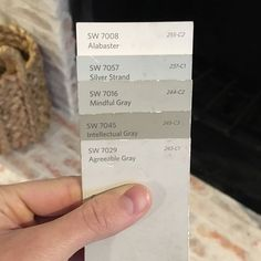 ❤️ intellectual gray with mindful gray. Whole House Paint Colors from Sherwin Williams - Alabaster, Silver Strand, Mindful Gray, Intellectual Gray, and Agreeable Gray Interior Paint Colors, Paint Colors For Home, Paint Colours, Interior Painting, Interior Design, Fixer Upper Paint Colors, Stucco Colors, Purple Interior, Brown Interior