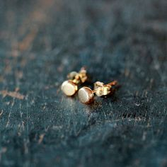 Gold Dot Studs 14k Gold Stud Earrings Organic by ShopClementine