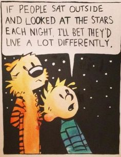 I agree with Calvin and Hobbes !