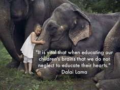 I feel that in the U.S. we have, in many ways, forgotten to educate our children's tender hearts.