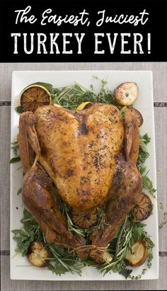 This easy all-in-one Gourmet Gobbler Turkey kit includes Spiced Brine Blend, a heavy duty BPA-Free brining bag (for turkeys up to 24 lbs), and oz of our Gourmet Gobbler Smoky Peppercorn & Herb Rub! Great for Thanksgiving and Holiday Cooking. Pork Chop Recipes, Turkey Recipes, Chicken Recipes, Keto Chicken, Turkey Brine, Roasted Turkey, Gourmet Recipes, Cooking Recipes, Healthy Recipes