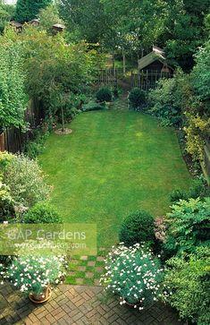 GAP Gardens - Long narrow town garden divided into sections . Narrow Garden, Woodland Garden, Garden Landscaping, Landscaping Ideas, Topiary, Garden Plants, Lawn, Garden Design, Golf Courses