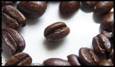 Beans from Modest Coffee, a new subscription coffee service in Chicago.