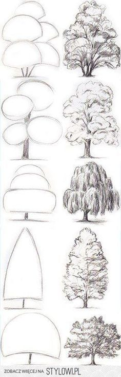Drawing Tips Tree Drawing Tutorial. Start with basic geometric shapes. Drawing Techniques, Drawing Tips, Painting & Drawing, Drawing Ideas, Sketch Ideas, Sketching Tips, Trees Drawing Tutorial, Drawing Drawing, Drawing Practice