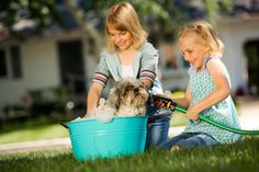 These girls help each other wash the dog. - Learn English for beginners - English vocabulary for children (kids) & ESL students, learn the most common English words with pics & examples