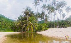 Visita al parque natural Tayrona en Colombia https://blogtrip.org/parque-tayrona-santa-marta-colombia-viaje-natural/