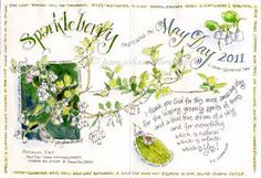 I love the creative style of Pam's nature journaling. Inspiration for my own nature journal