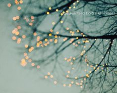 fairy lights tree - Buscar con Google