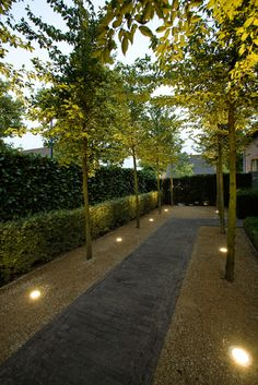 Find the Perfect Landscape Lighting Design for Your Backyard Contemporary Garden Design, Small Garden Design, Landscape Design, Driveway Landscaping, Outdoor Landscaping, Driveway Ideas, Driveway Paving, Patio Ideas, Back Gardens