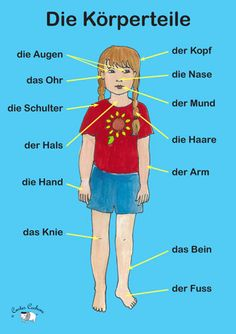 Die Körperteile (Body Parts) German Grammar, German Words, French Words, Ways Of Learning, Learning Spanish, Learning Italian, How To Speak French, Learn French, French Body Parts