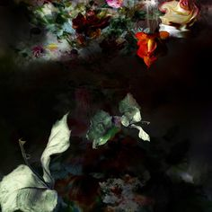 Photography by Isabelle Menin | http://ineedaguide.blogspot.com/2015/02/isabelle-menin.html #art #photography